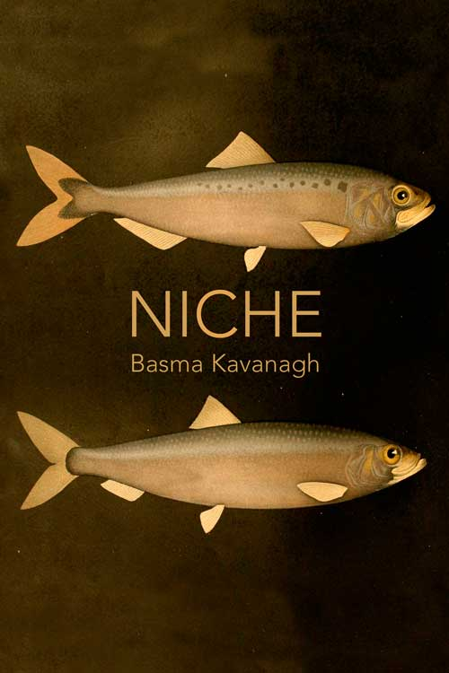 Niche has won the Lansdowne Prize for Poetry