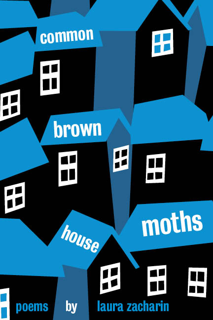 Common Brown House Moths cover